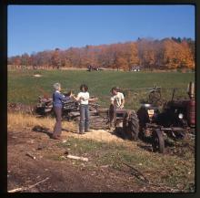 Montague Farmers gather firewood.